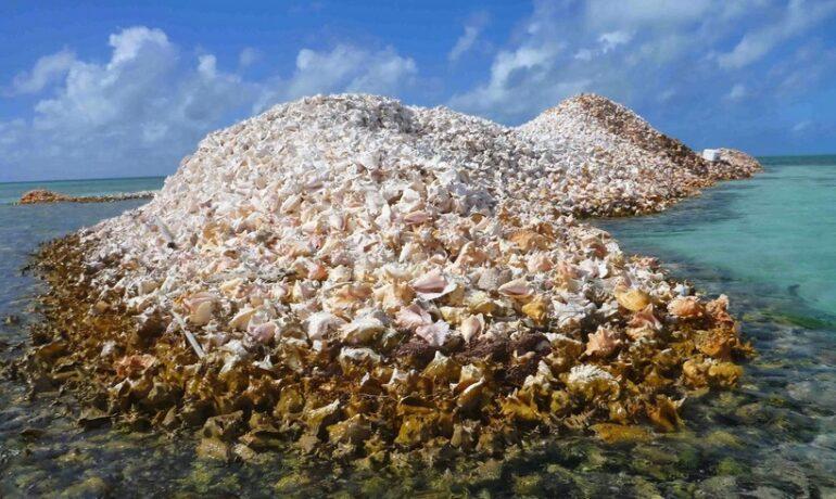 Карибы. Острова из ракушек