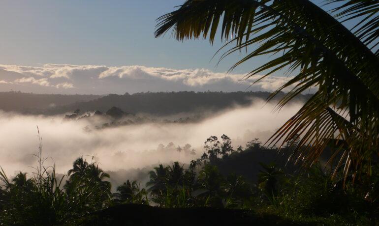 Отдых в Папуа-Новая Гвинея
