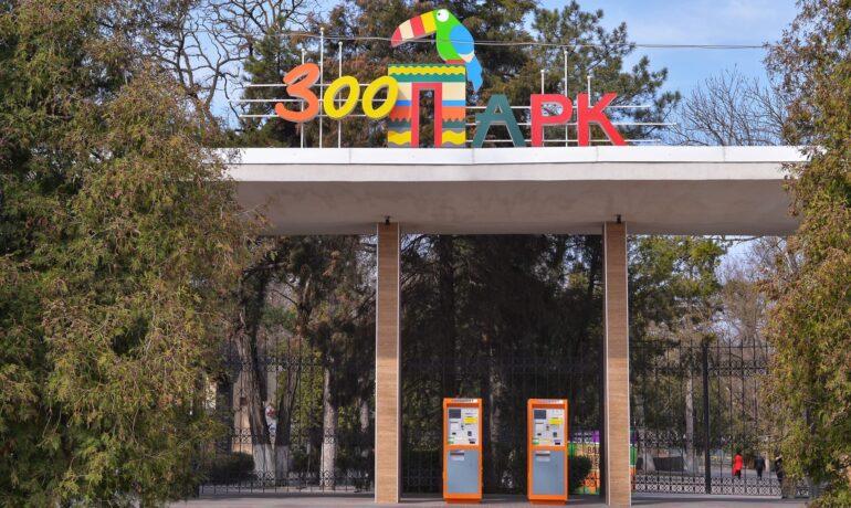 Зоопарк в Ростове на Дону: самая добрая достопримечательность города