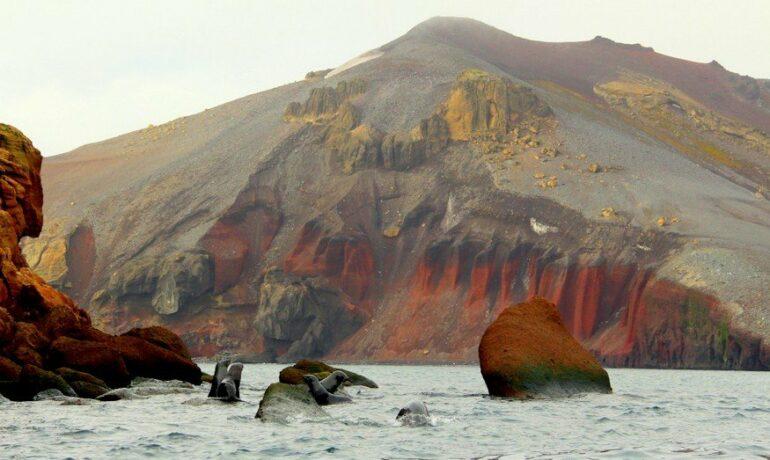 Чудо природы: вулканический остров Десепшен, Антарктида