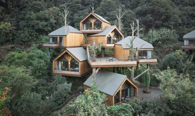 Отель на дереве в Китае. Путешествие в мечту из детства