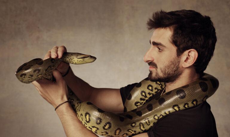 Укус змеи в путешествии, как быть?
