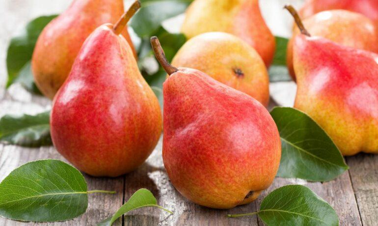 Груша - сезонные фрукты созревающие дома