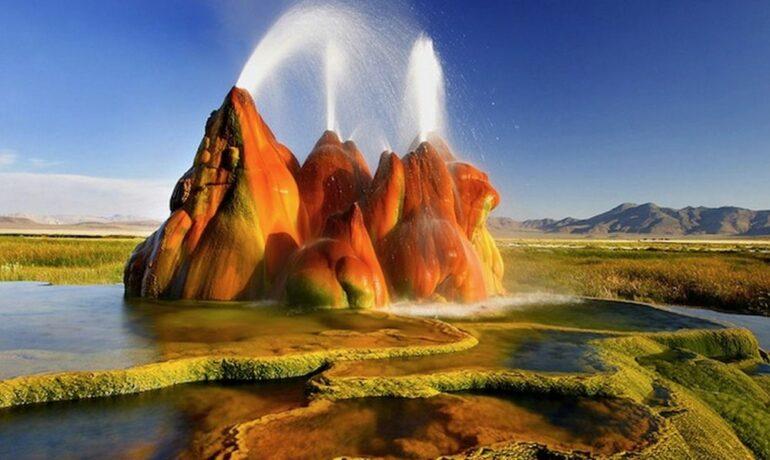 Удивительные творения природы. Причудливые звери, камни