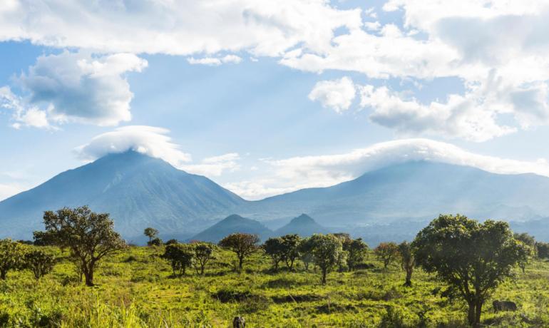 Национальный парк Вирунга, Конго