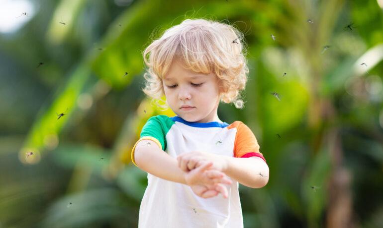 Комары и дети. Как защитить детей от комаров?