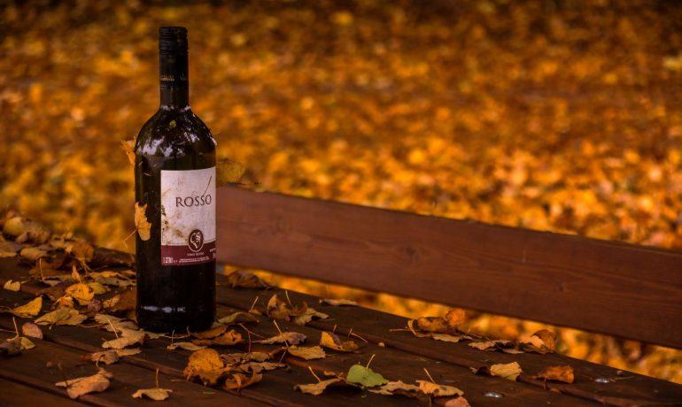 Как отдохнуть осенью весело и интересно на фестивале молодого вина