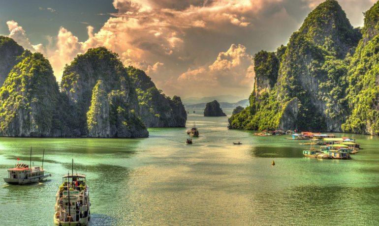 Вьетнам - страна крупнейший экспортёр орехов кешью