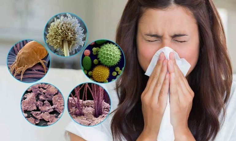 Об аллергии. Вчера и сегодня