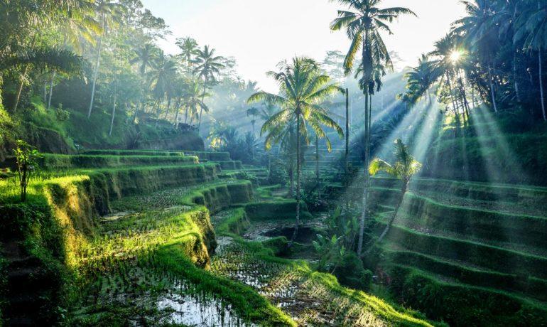 Проведите восстанавливающий отпуск на Бали, Индонезия