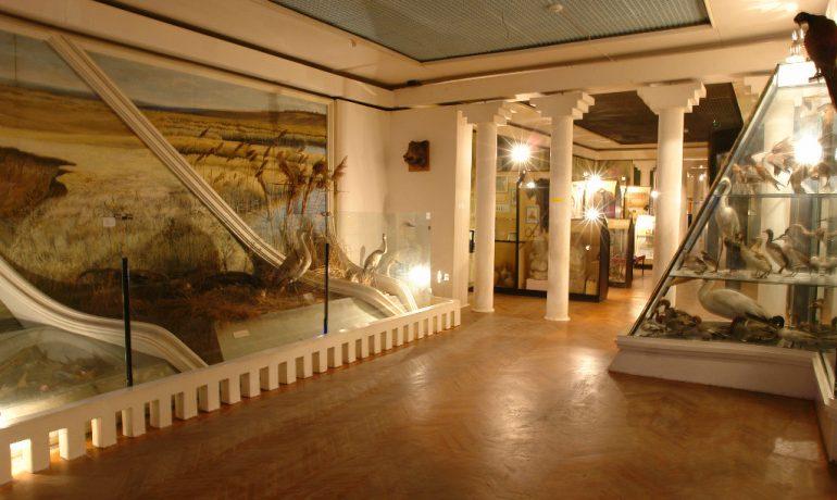 Достопримечательности Краснодарского края: Ейский историко-краеведческий музей