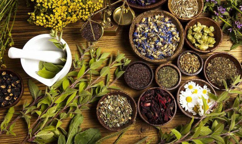 Натуральные лекарства прямо из сада