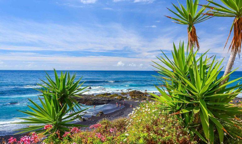 Тенерифе - отдых у жерла вулкана