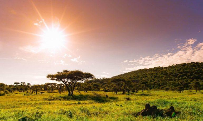 Танзания. Путешествие в страну Хакуна-Матата