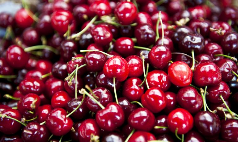 Вишня: свойства, витамины и пищевая ценность