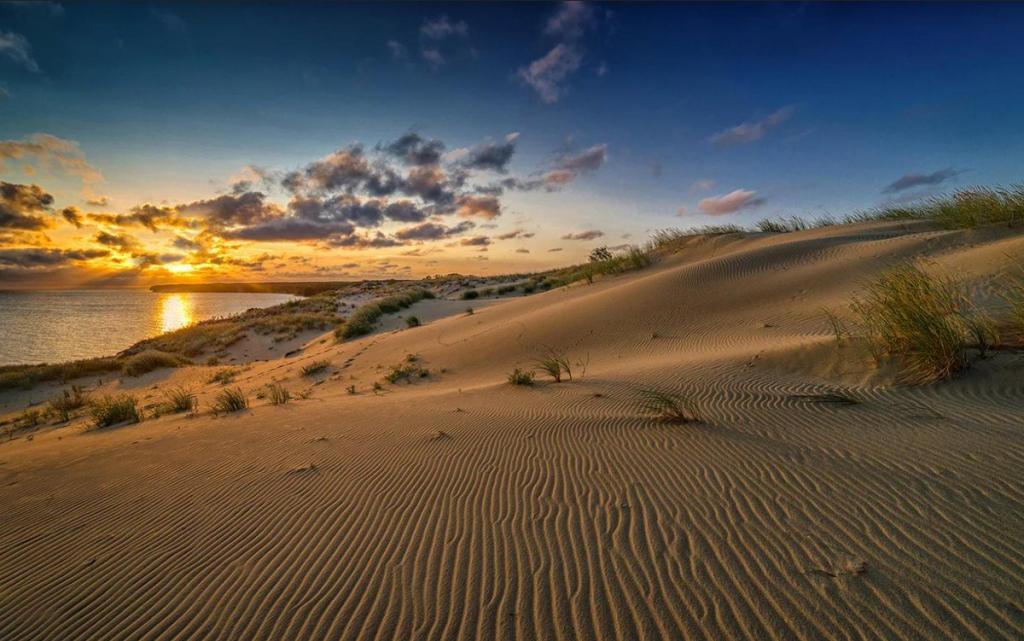 Куршская коса: песчаные дюны там, где мы их не ожидали увидеть