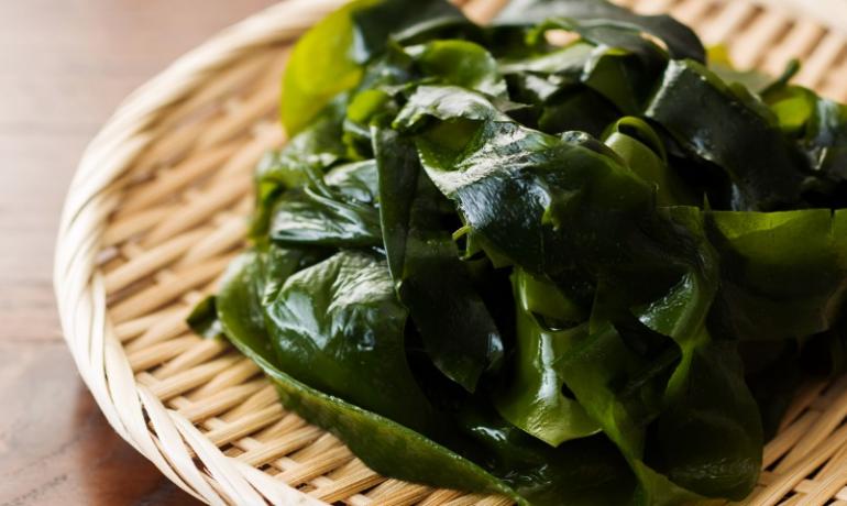 Водоросли вакамэ: морской овощ для снижения лишнего веса