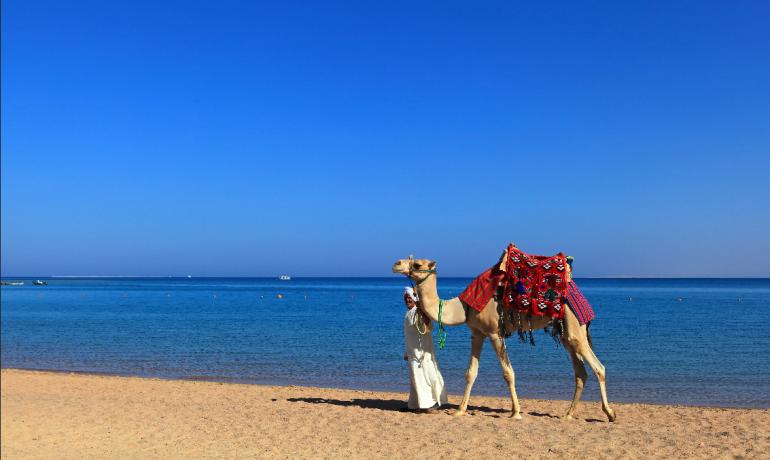Недорогой тур в Египет: Хургада в июне