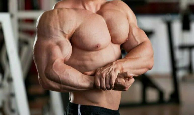Наращивание сухой мышечной массы: возможно или нет