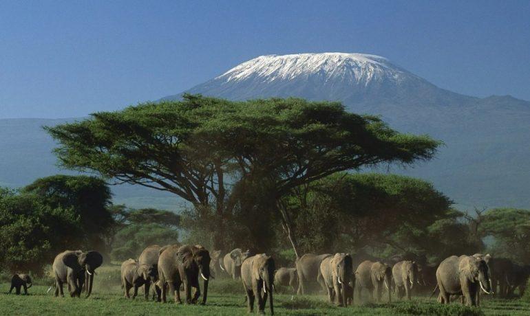 Небо, горы и вода: ТОП-15 лучших приключений на просторах Африки