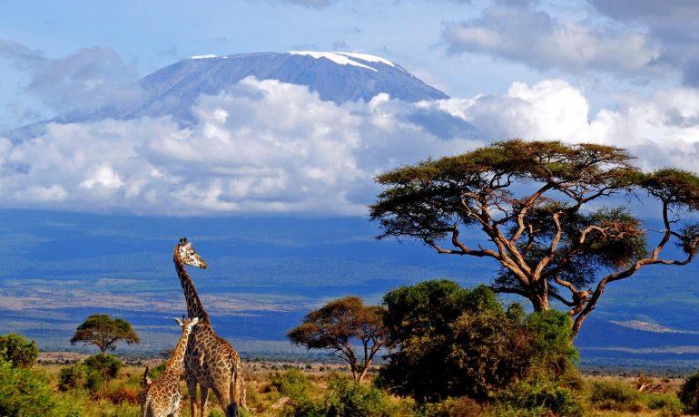 Танзания: африканская страна богатая полезными ископаемыми