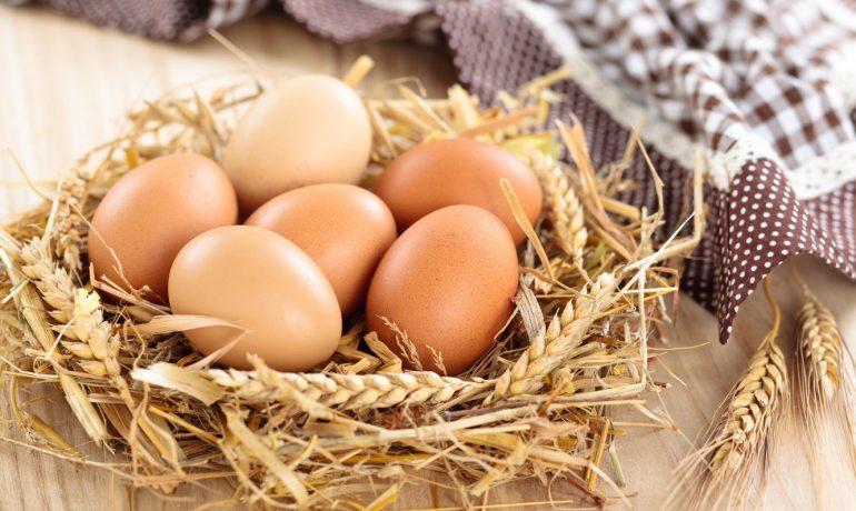 Правильное хранение яиц